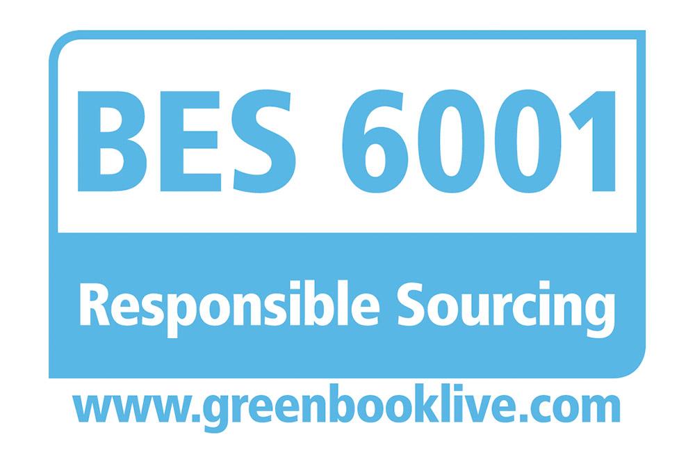 BES 6001 logo